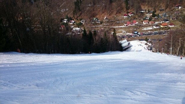 Zadní Telnice - Nice slopes in the early hours,  after lunch they get a bit Slushy  - © damien.mchale3616