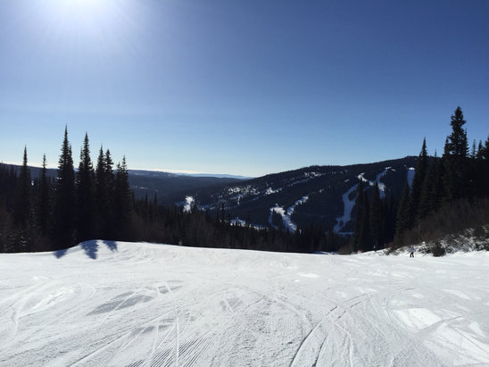 Sun Peaks - Beautiful bluebird day with a little bit of fresh snow yesterday - still icy patches but ok for beginners too. - ©Bella-iPhone6