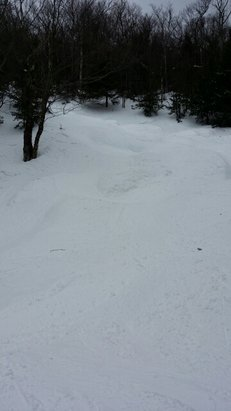 Mad River Glen - First time at MRG. Great terrain and plenty of loose snow in the bumps and glades.  - © ref