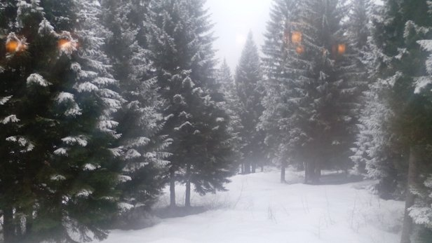 Folgarida - Marilleva, 22 Marzo 2015 - © Folgarida - Marilleva
