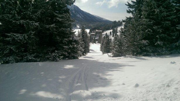 Turracher Höhe - die ganze Nacht über Schneefall und tolles Oster-Skifahren - © kurtlembcke59