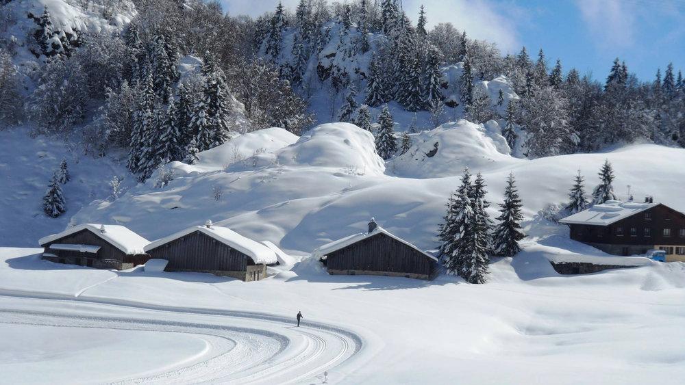 Ambiance hivernale sur le domaine nordique des Brasses - © Station du Massif des Brasses