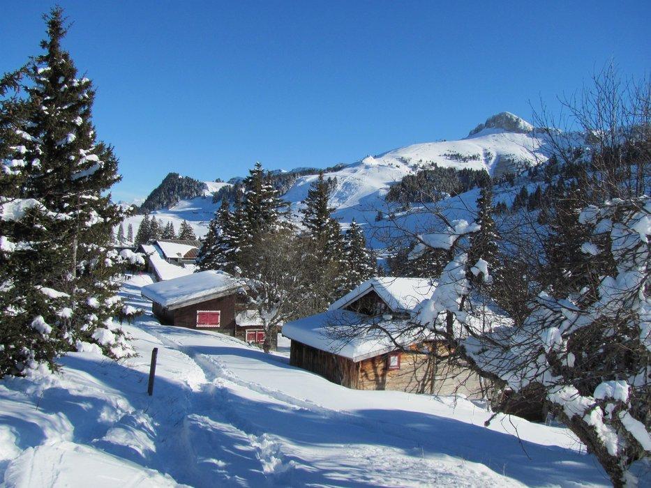Ambiance hivernale sur Thollon les Memises - © OT de Thollon les Memises