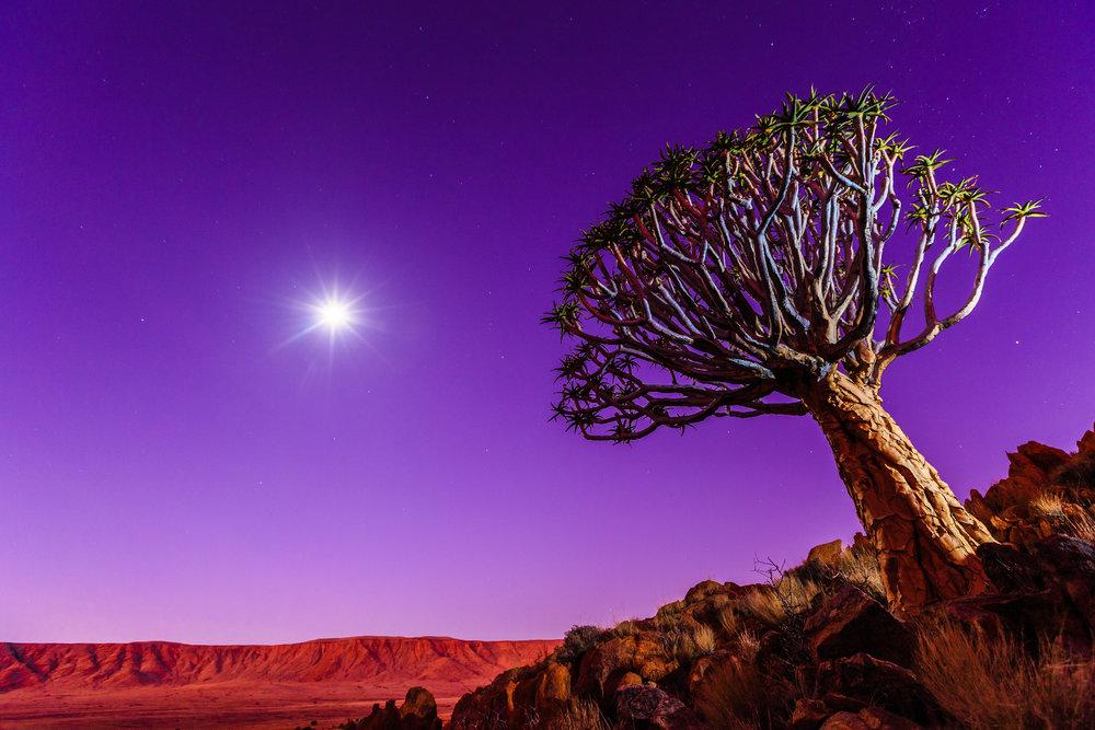 Im Mondlicht - © VAUDE Visions | Markus Obländer