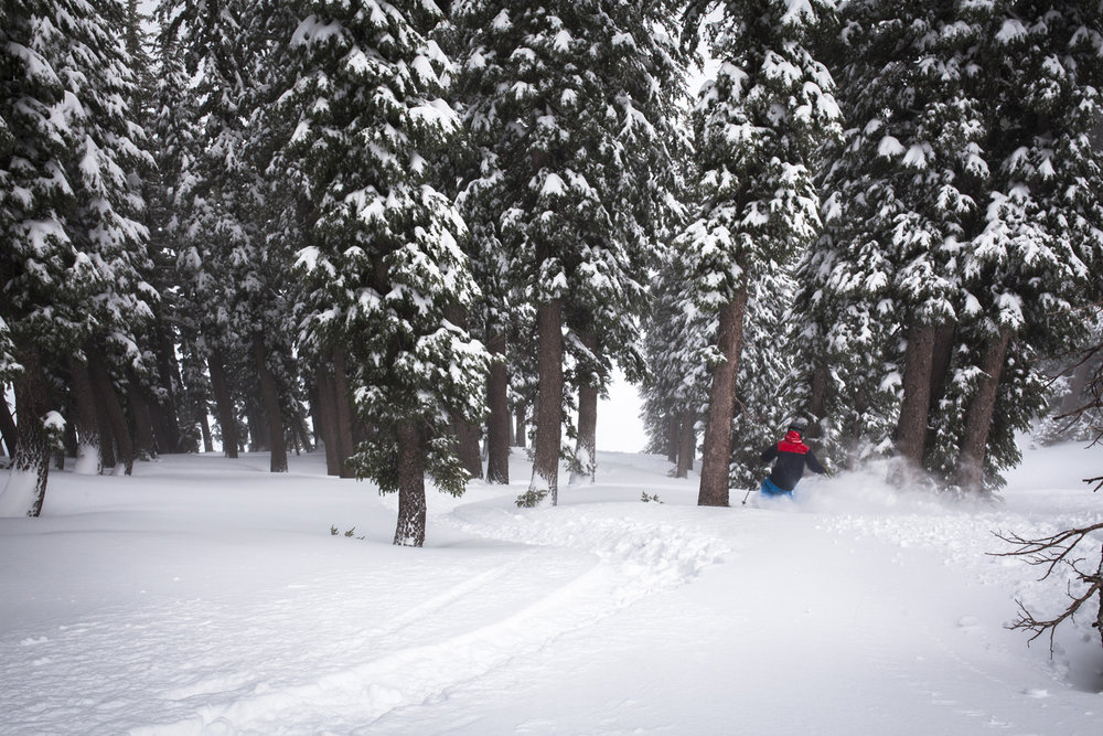 3.5 feet of snow blanketed Squaw | Alpine over the last four days. - © Ben Arnst