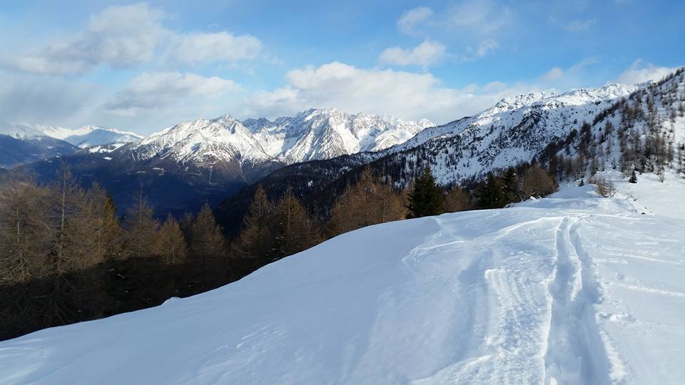 Aprica 18.01.16