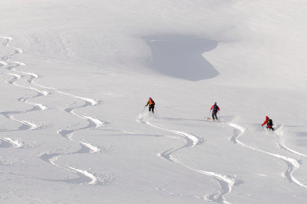 Traumhafte Pulverschnee-Abfahrt vom Gipfel des Joel - © Nobert Eisele-Hein
