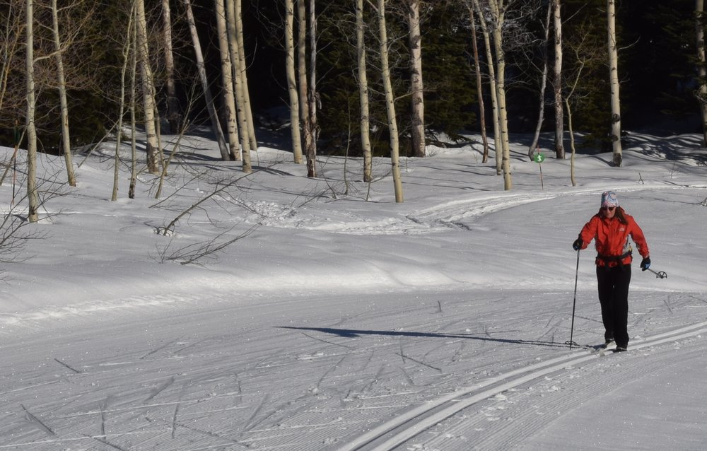 Grand Targhee's Nordic trails are groomed for classic and skate skiing. - © Becky Lomax