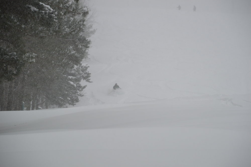 "Winterstorm Jonas brought whiteout conditions to Wisp, along with 36"" of fresh. - © Wisp Resort"