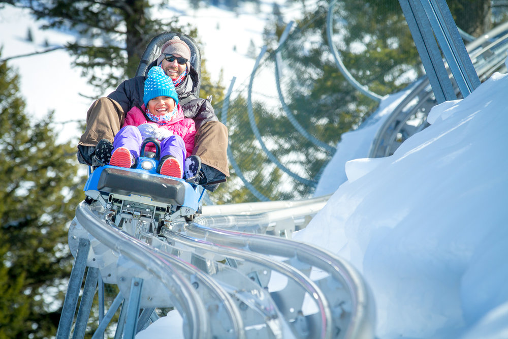 Snow King's Cowboy Coaster descends curves, corkscrews and loops. - © Snow King Mountain