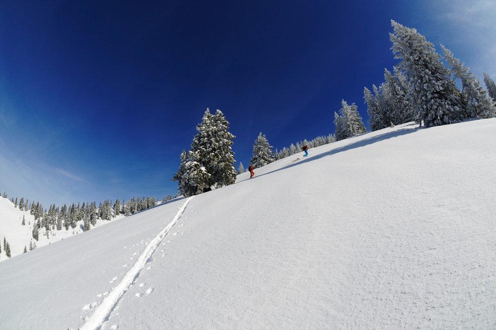 Viel Powder und entspanntes Spuren bei der Tour auf das Dürrnbachhorn - © Norbert Eisele-Hein