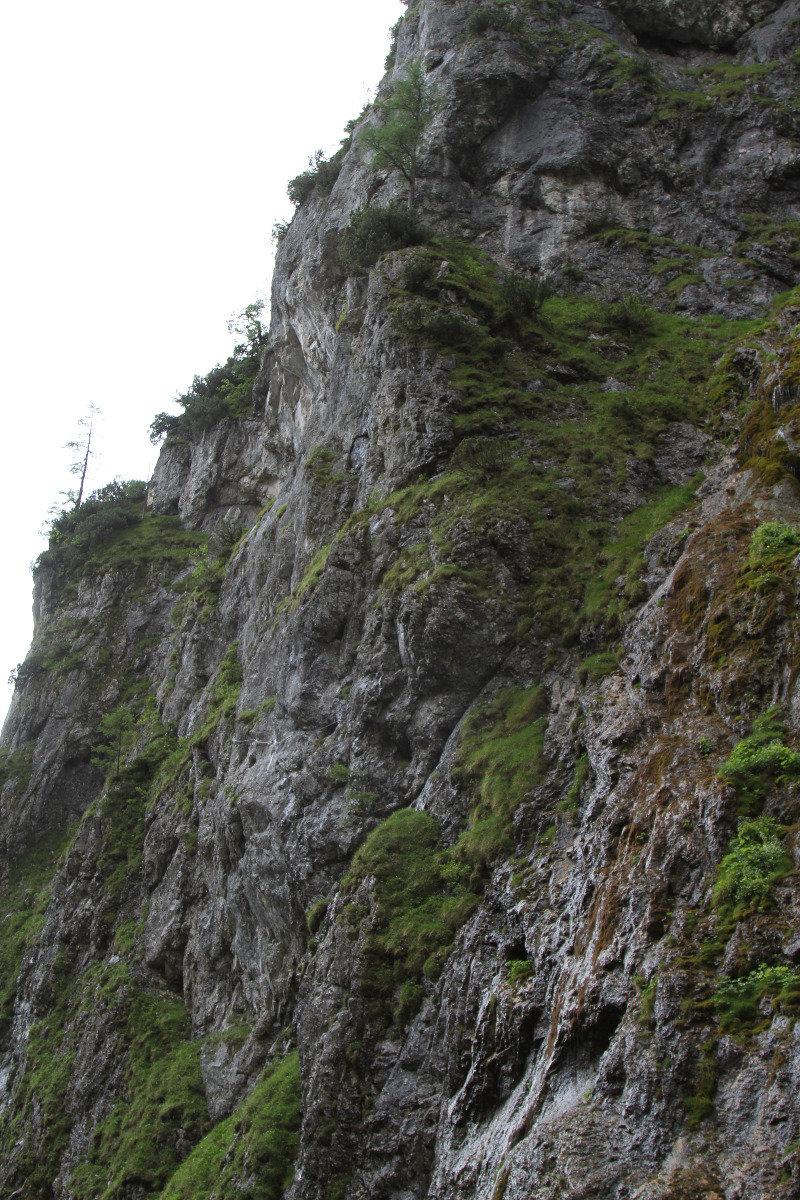 Der Rosina-Klettersteig geht fast senkrecht nach oben und bietet kaum Möglichkeiten, sich mal auszuruhen - ©Bergleben.de
