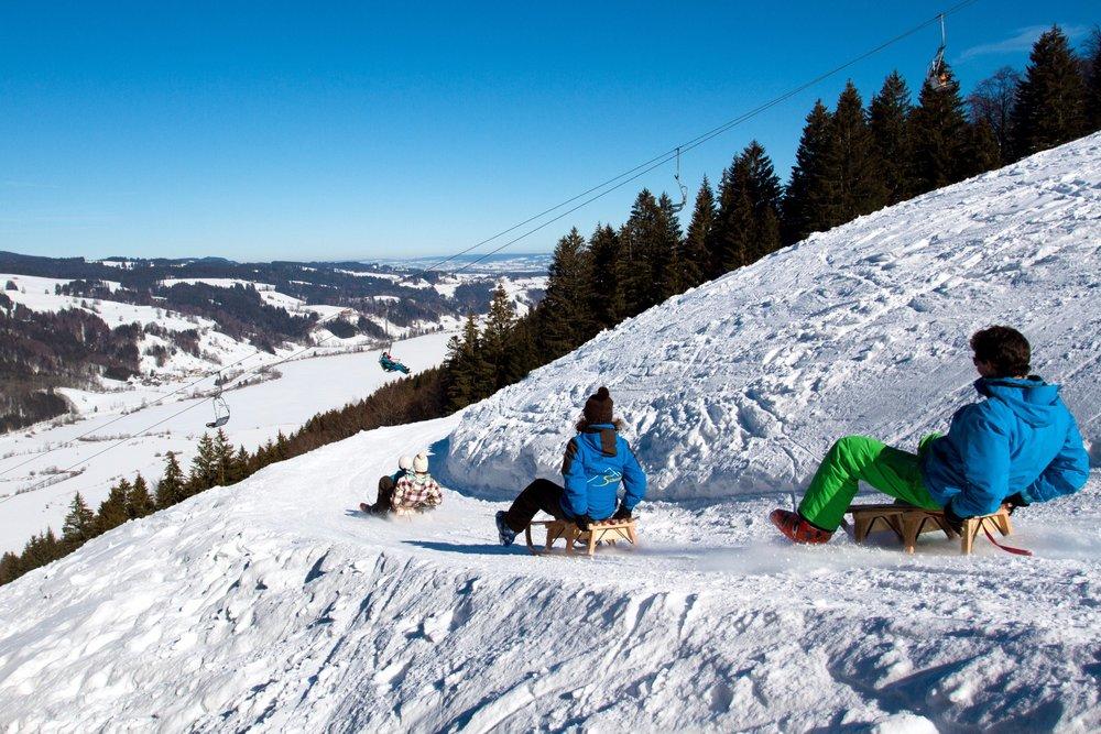 Naturrodelbahn mit Alpseeblick - © Alpsee Bergwelt