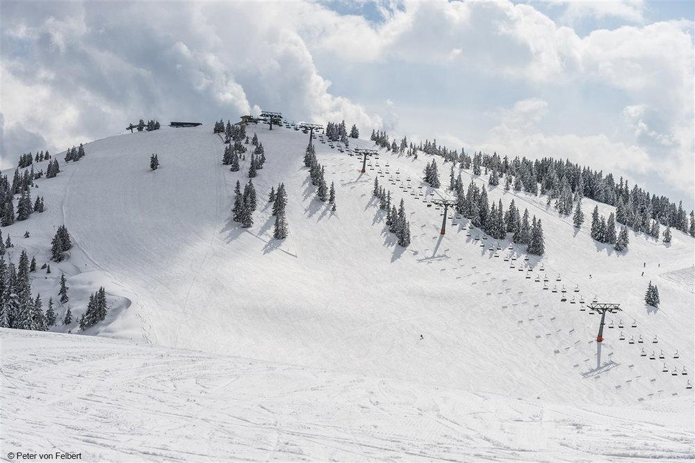 Breite Hänge und Pisten findet man in der SkiWelt noch und nöcher - © Peter von Felbert
