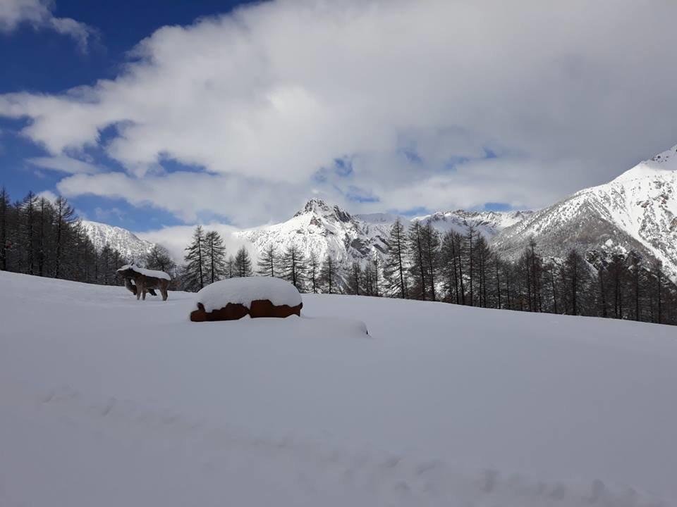 Bardonecchia 12/3/18 - © Bardonecchia Ski/Facebook