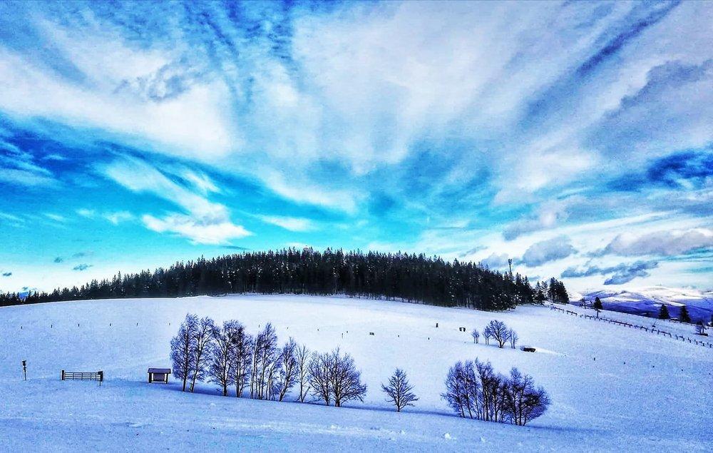 Skiareál Kraličák 14.1.2019 - © facebook | Skiareál Kraličák