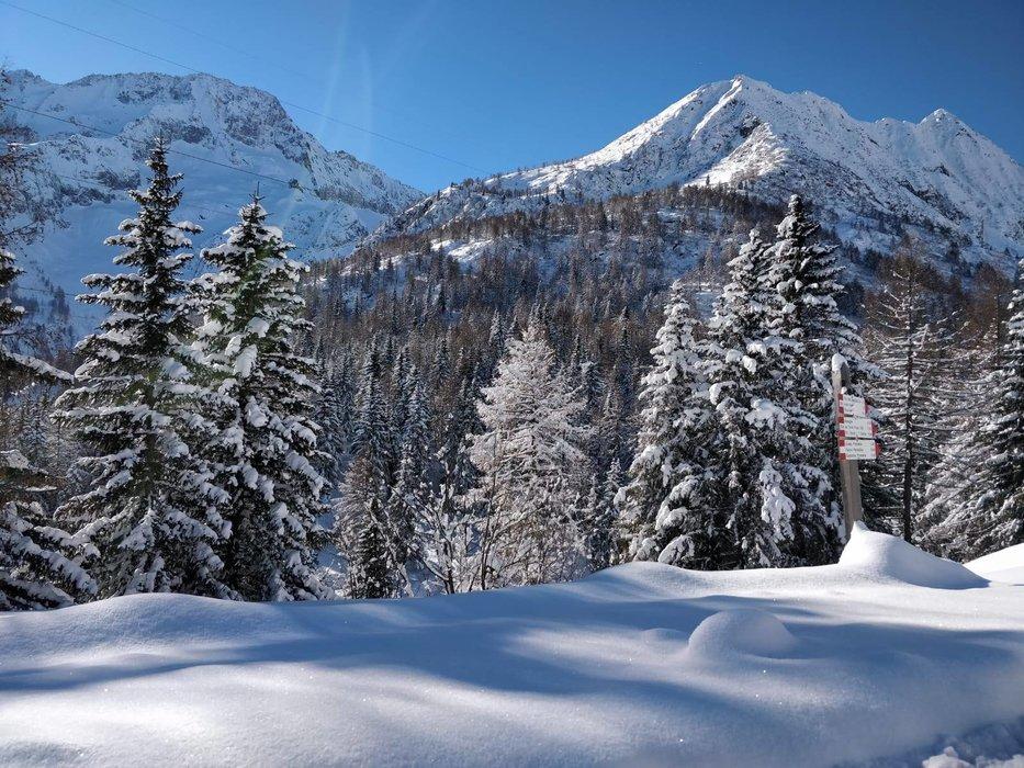 Passo Tonale  - © Visit Trentino Facebook