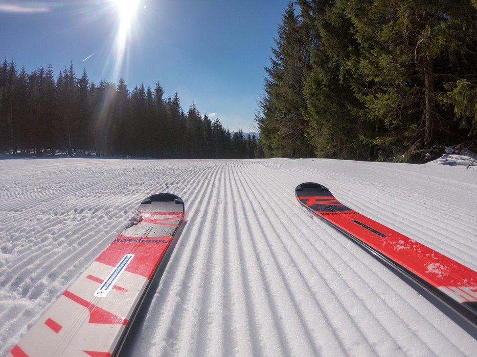 Dove continuare a sciare? - © Skilifte Todtnauberg