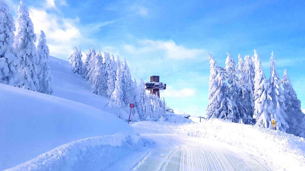 Verschneite Hänge im Pillersee - © Bergbahn Pillersee
