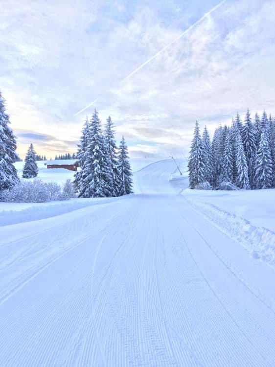 Orava Snow, Oravská Lesná 17.1.2019 - © facebook Orava Snow