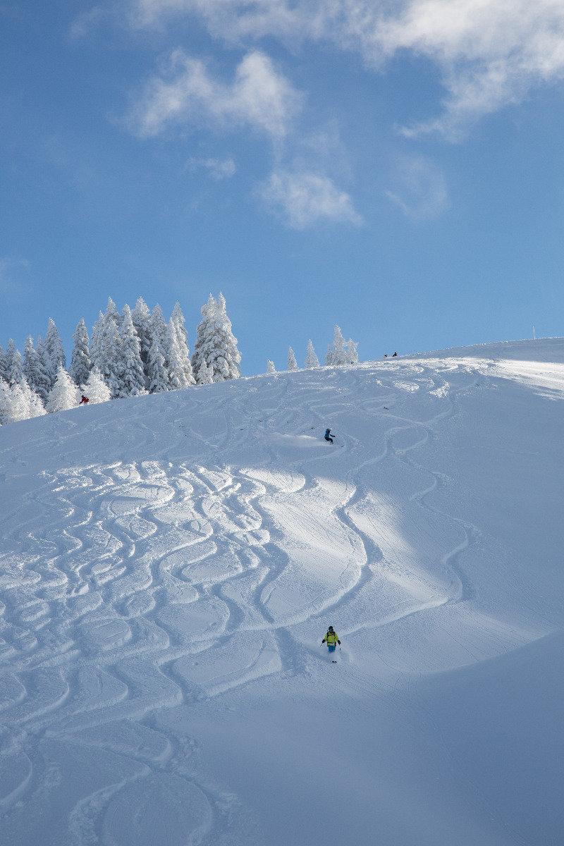 Neve fresca a Kitzbühel 13.1.19 - Condizioni neve perfette! - © Skiinfo