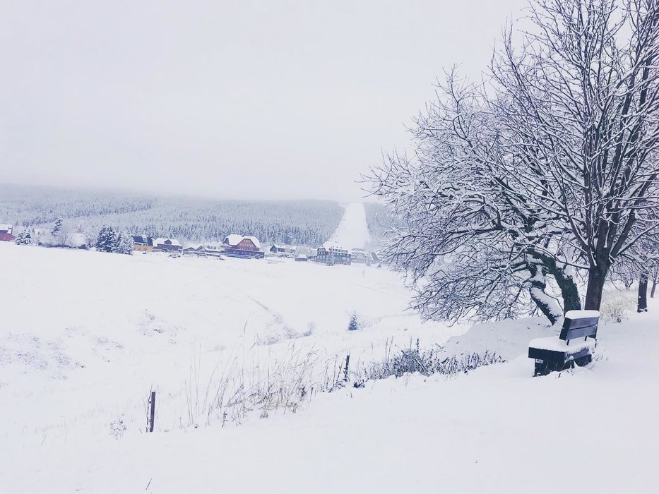 Čerstvě nasněženo... Malá Úpa, 13.11.2019 - © facebook | Malá Úpa