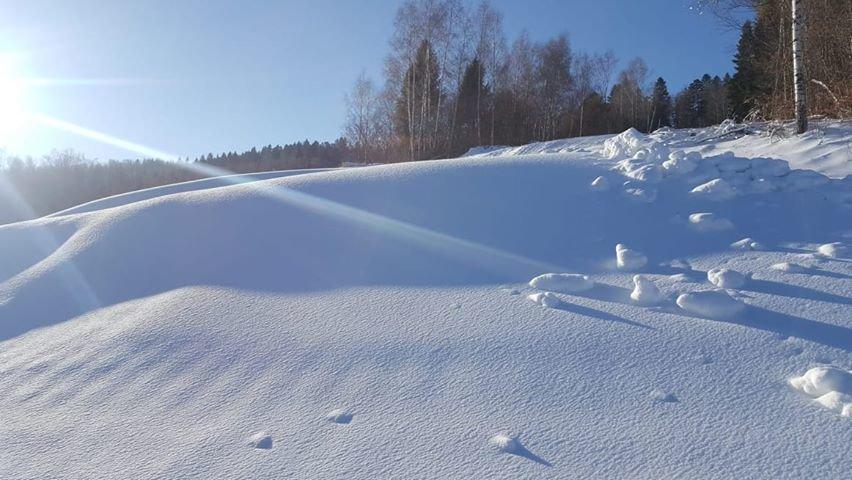 Aktuálne podmienky v stredisku Mraznica - Hnilčík (začiatok januára 2020) - © Mraznica - Hnilčík
