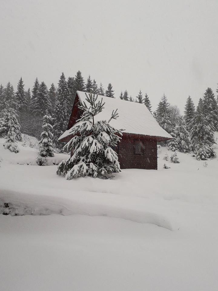 Ski Litmanová 5.2.2020 - © facebook | Ski Litmanová