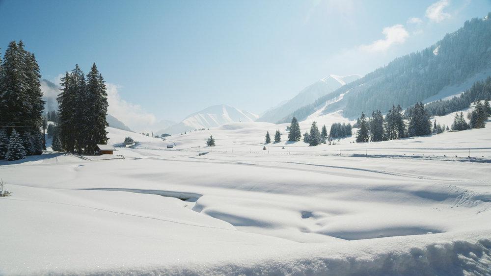 Verschneite Winterlandschaft in Berwang - © Tiroler Zugspitz Arena