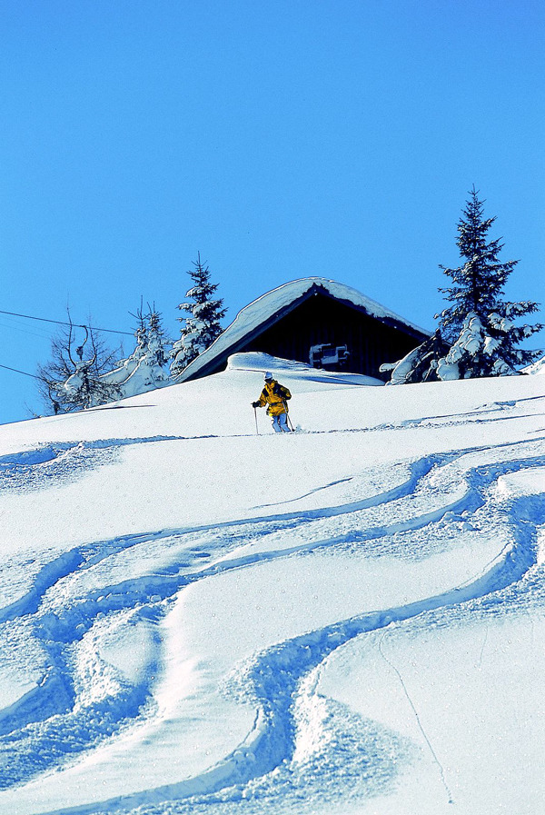 Skifahrer - © Salzburger Saalachtal