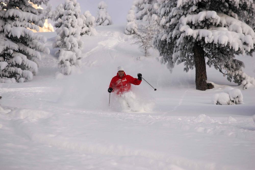 Off-piste skier in Rosengarten Latemar - Italy