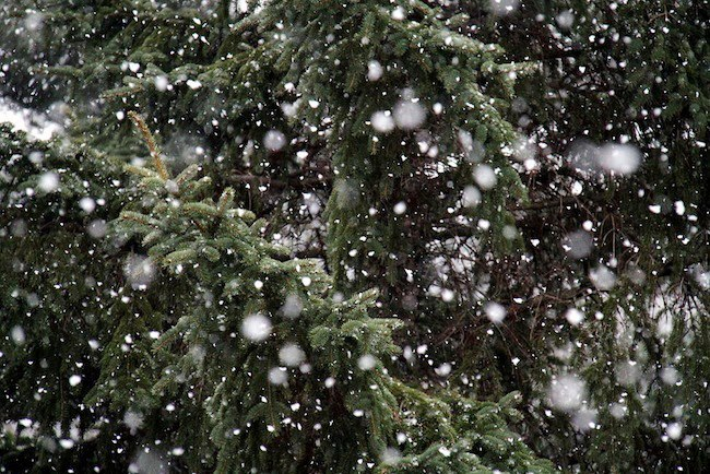 Snow falling at Telluride. - © Telluride/Facebook