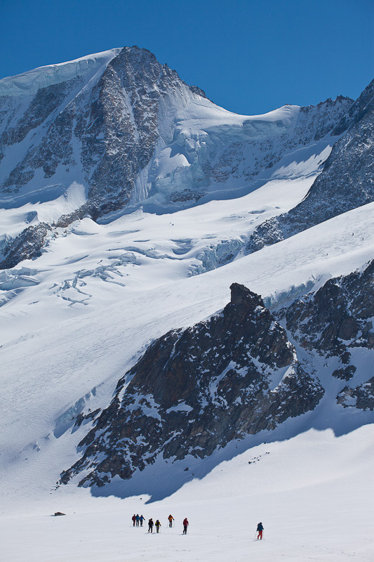 Skitourengeher auf dem Fieschergletscher vor dem Wannenhorn, Blick von der Finsteraarhornhütte, Wallis, Schweiz - © Iris Kürschner/powerpress.ch