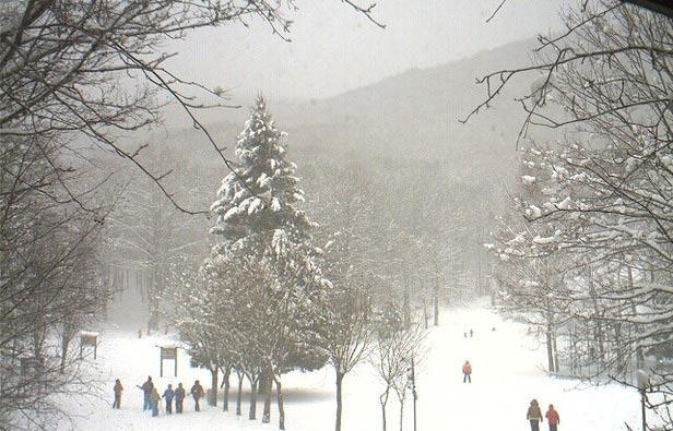 Laceno, Campania - Neve fresca 11 Febbraio 2013
