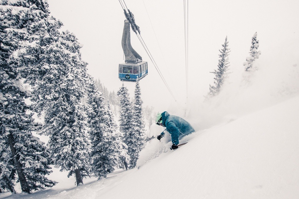 Last year, our visitors chose Snowbird as the Best Overall Resort in North America. - © Liam Doran