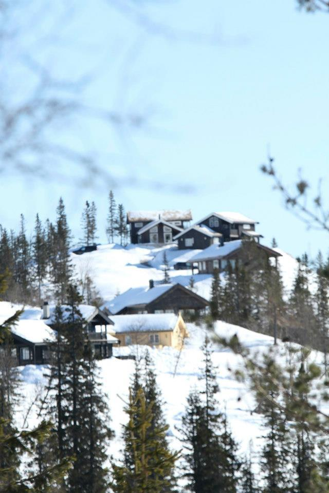 Lifjell Skisenter 2013