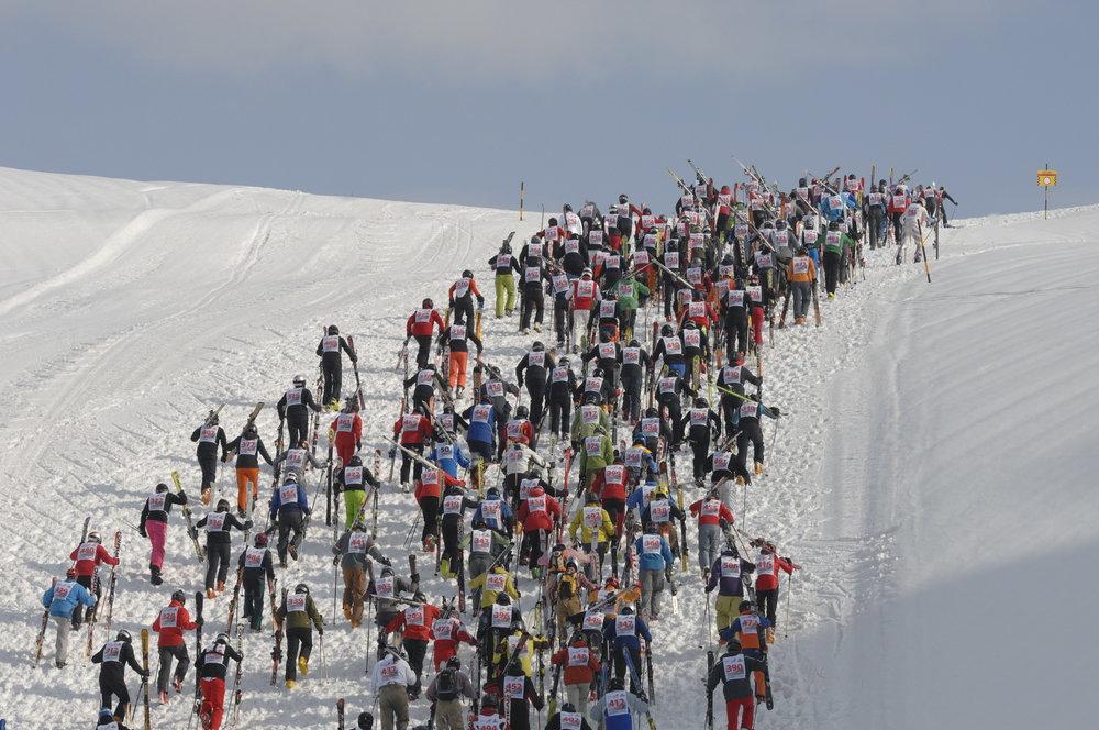 Uphill segment at the White Thrill race at Arlberg. - © TVB St. Anton am Arlberg / Fotograf Josef Mallaun