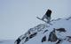 Snowboarder catching air at Glencoe (Glencoe Mountain Ltd)