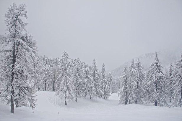 Winterlandschaft nach viel Schnefall im Skigebiet Monterosa Ski