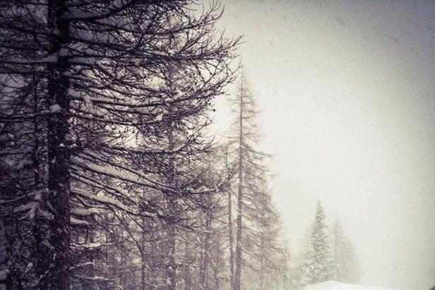Courmayeur, 27 dic 2014  - © Courmayeur Mont Blanc