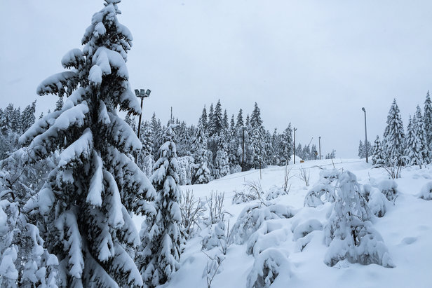 En sjelden gang dumper det i Oslo Vinterpark, og da kan man kjøre pudder også i Tryvann!