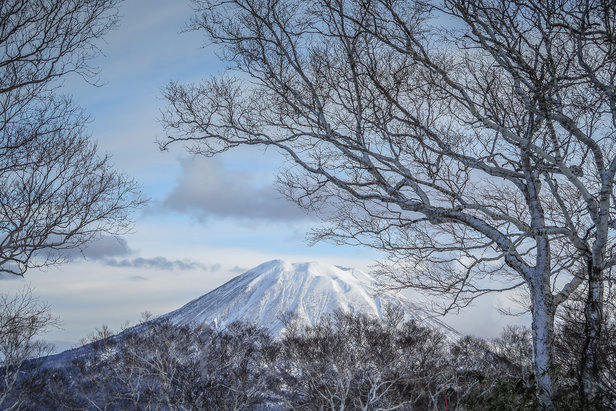 "The iconic Mount Yotei is known as the ""Mount Fuji of Hokkaido.""  - © Linda Guerrette"