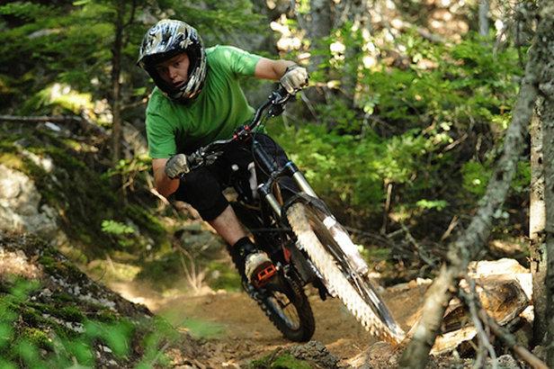 A mountain biker explores the singletrack around Creekside in Whistler.