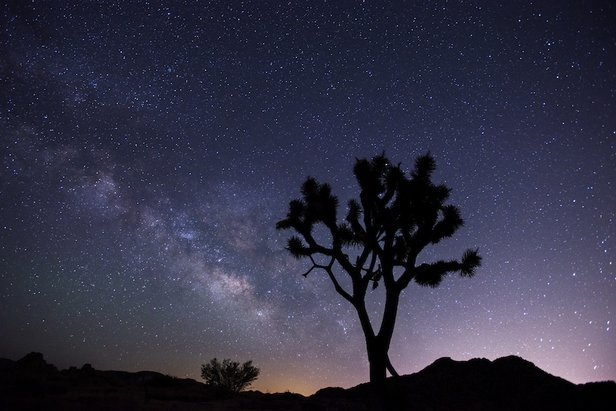 Stargazing Events Fall on National Parks- ©Joshua Tree National Park