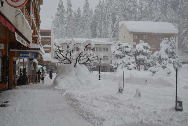 Superb Snow in Switzerland