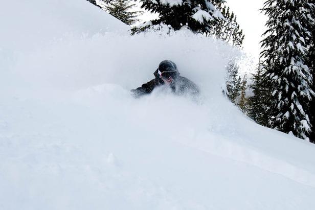 Mammoth - Powder skier photo Ashley Smith 677px