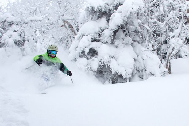 More shots from a deep snow day at Mad River Glen. - ©Ember Photography
