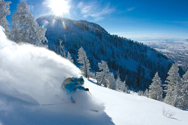 Snow Science: Finding Perfect Powder- ©Steve Lloyd