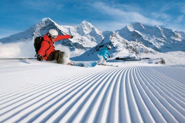 Grindelwald - carvingkjøring på Maennlichen i Wengen.   - © Swiss-images.ch/Christof Sonderegger