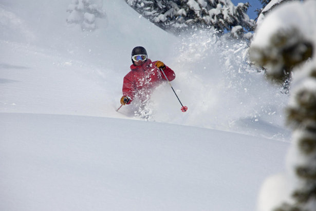 Powder skiing at Hoodoo. Photo courtesy of Hoodoo Ski Area.